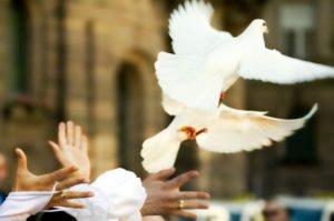 sortie de ceremonie mariage colombes 300x199 - Sorties de cérémonies