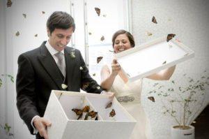 sortie de ceremonie mariage papillons 300x199 - Sorties de cérémonies