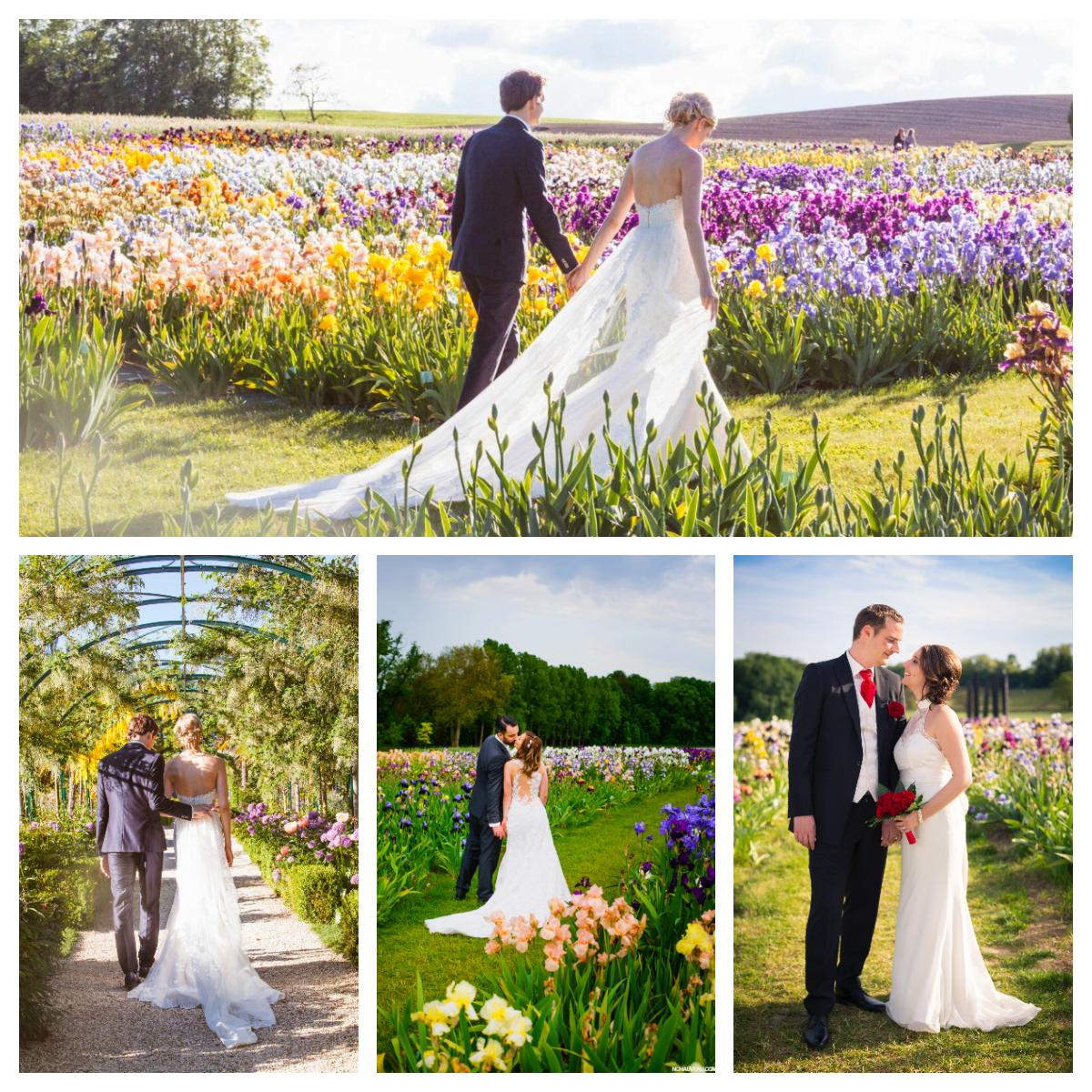 Unknown 1 1 - Au printemps - Parez votre mariage de mille et une couleurs