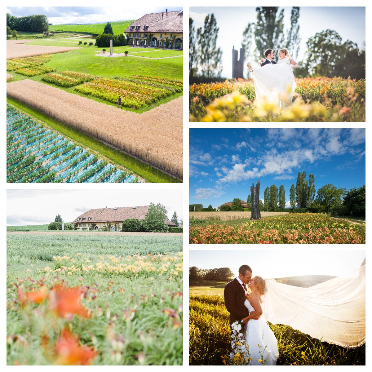 Unknown 1 - En été - Parez votre mariage des doux rayons du soleil !
