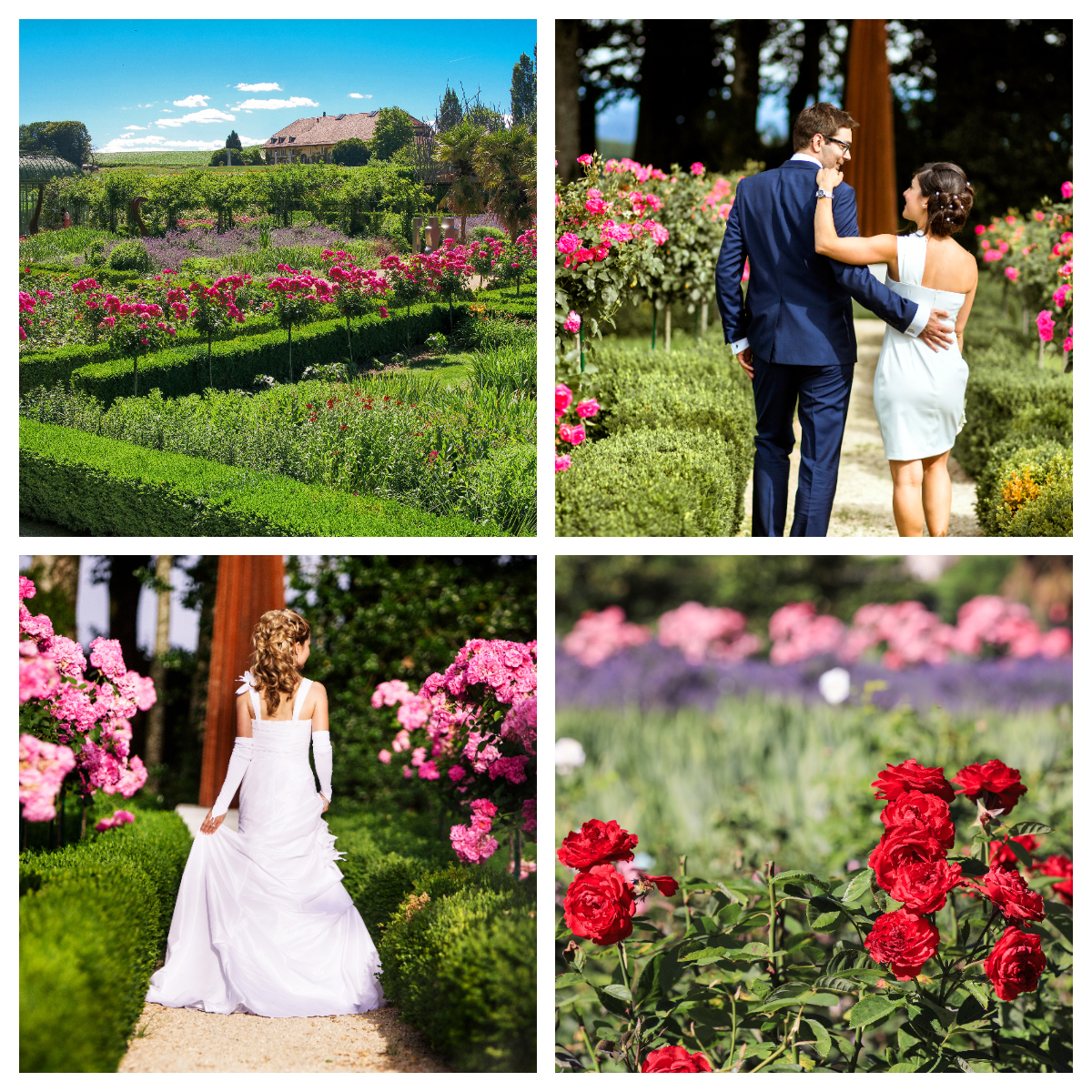 Unknown - En été - Parez votre mariage des doux rayons du soleil !